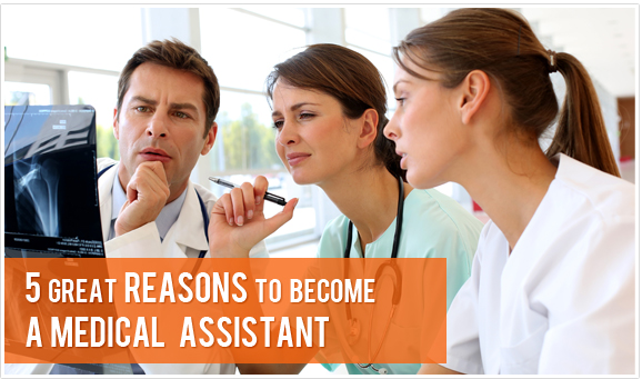 medical assistant | why become a medical assistant, Human Body